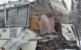 Лесовоз протаранил припаркованный пассажирский автобус на трассе в Пермском крае