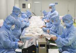 В Австралии, Дании и Нидерландах обнаружен новый штамм коронавируса