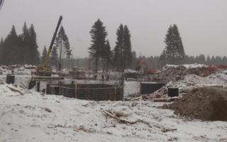 «РЖДстрой» может возобновить строительство нового зоопарка до конца года