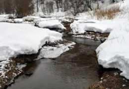 Экологи: «Вода в малых реках Перми стала чище»