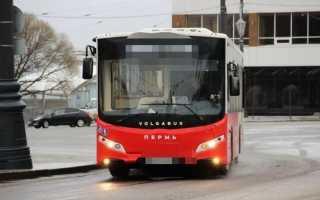 В Перми планируют продлить два автобусных маршрута