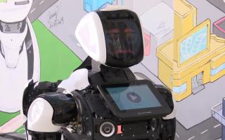 Пермская IT-компания «Promobot» открыла представительство во Владивостоке