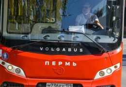 В Перми с 21 декабря по улице КИМ начнут ходить автобусы