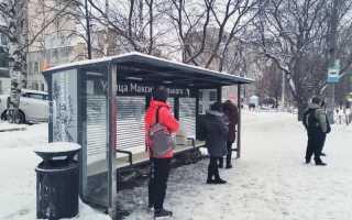 Дмитрий Махонин поручил организовать проверку установленных остановочных павильонов в Перми