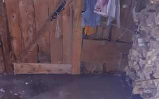 В Прикамье дом пенсионерки сковало льдом из-за выхода реки из берегов