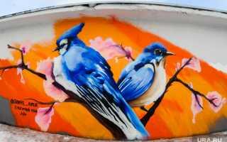 Самые страшные фильмы века иконкурс красоты среди птиц