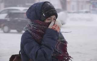В Пермском крае синоптики обещают порывы ветра до 18 м/с