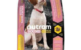 Сухой корм для собак Nutram: полезные свойства