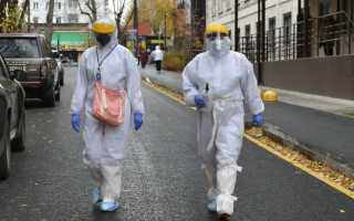 Новый рекорд: в Прикамье за сутки коронавирус подтвержден у 335 человек