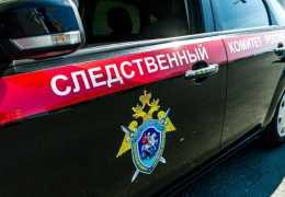 В Пермском крае мужчина задушил знакомую проводом и выбросил в лес