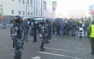 Более 15 сотрудников посольств прибыли на суд по Навальному