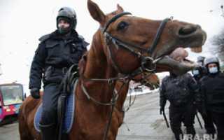 В центр Перми стягивают отряды силовиков