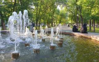 Неделя в Прикамье: зоопарк, лидер по взяткам, «Амкар» и проект крематория