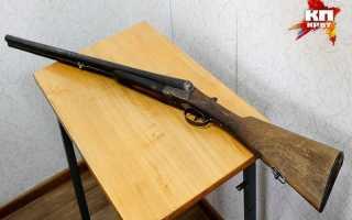 «Выстрелил в будку». В Пермском крае мужчина застрелил овчарку