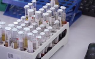 Частные клиники Перми в прошлом году оказали услуг почти на 1 млрд руб.