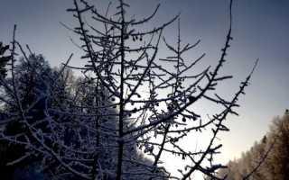 МЧС по Пермскому краю предупреждает о похолодании до -25 градусов