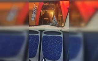 «Стекло посыпалось прямо на наши головы». Пассажирка автобуса рассказала об утреннем ДТП с трактором