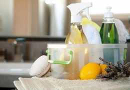 Как выбрать экологичную бытовую химию